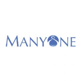 ManyOne